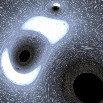Black Hole Encounter