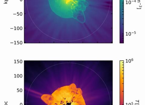 Density and Temperature Snapshots