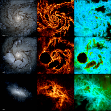 The evolution of a Milky Way-like galaxy over time
