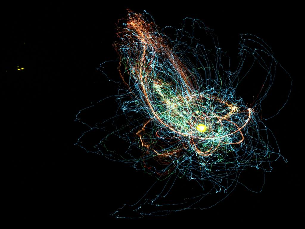 """""""Galactic Bloom"""" by Zach Hafen and Alex Gurvich"""