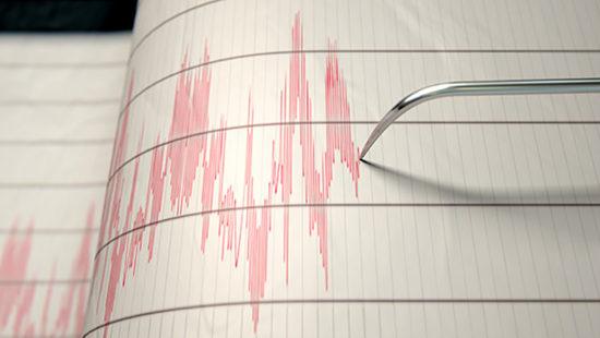 earthquake detective web
