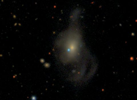 SN2019yvq in the Host Galaxy NGC 4441