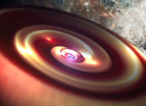 Birth of a Solar System