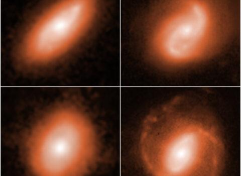 Fast Radio Bursts Host Galaxies